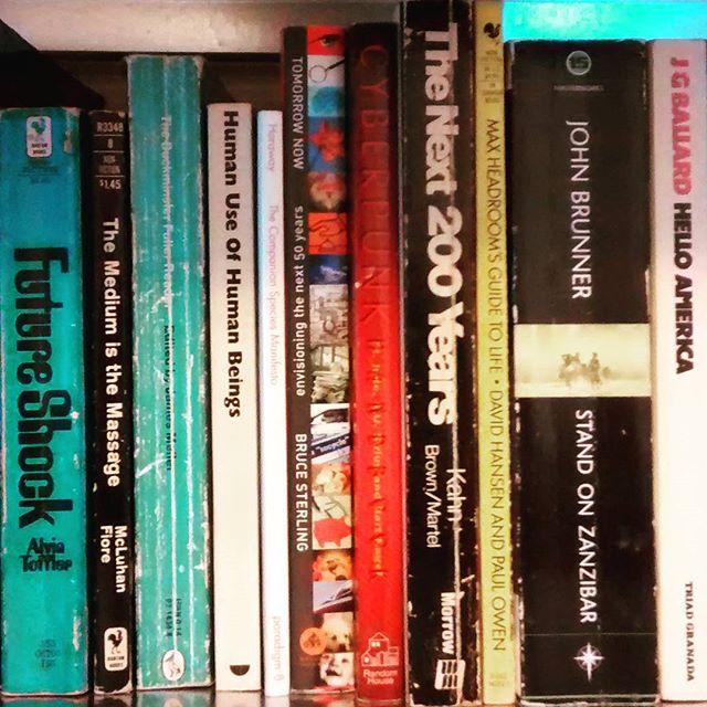 I finally have bookshelves again.